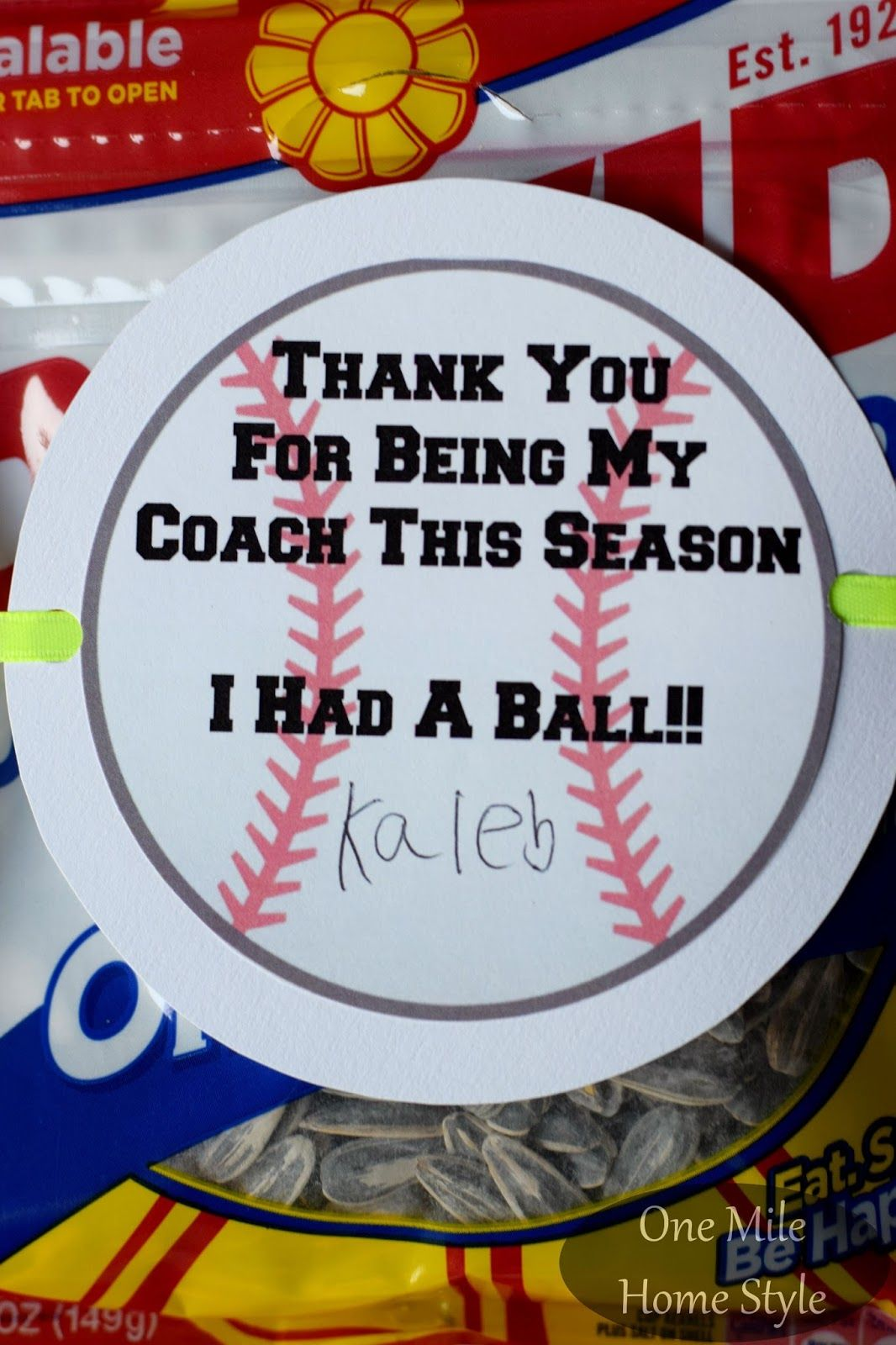 End of the Baseball Season Coach's Gift with Printable Gift Tag - One Mile Home Style