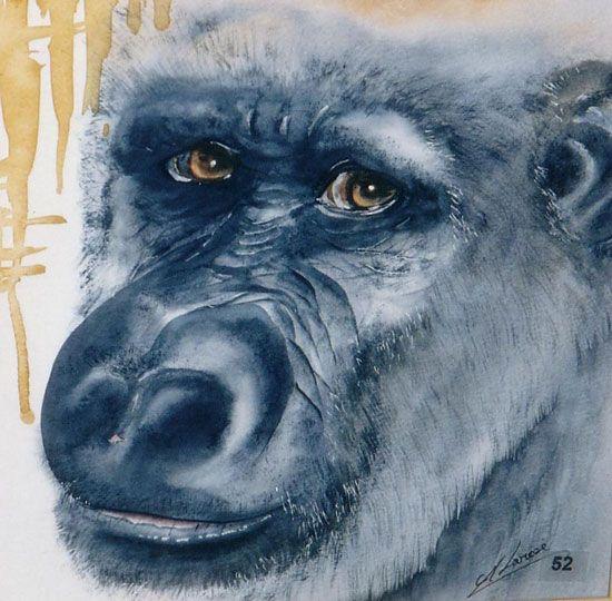 animaux--gorille-50x50