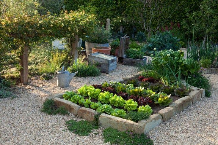 Pin On Summer Garden