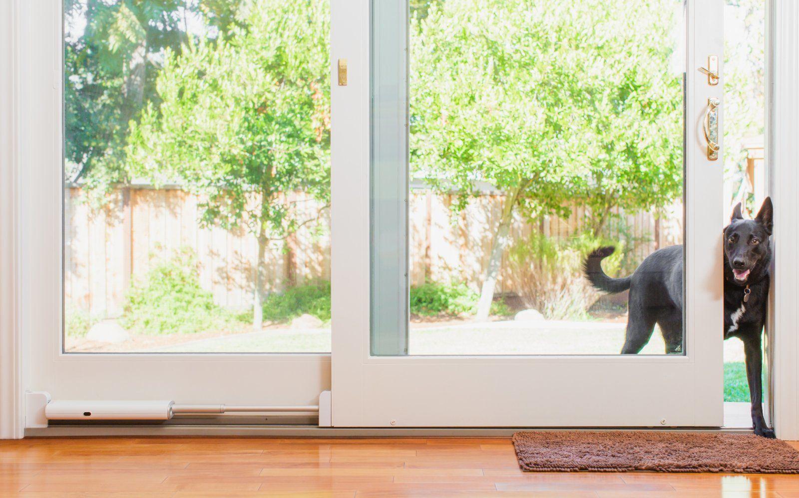 Wayzn Turns Your Sliding Door Into A Smart Pet Entrance Sliding Pet Door Sliding Doors Sliding Glass Door