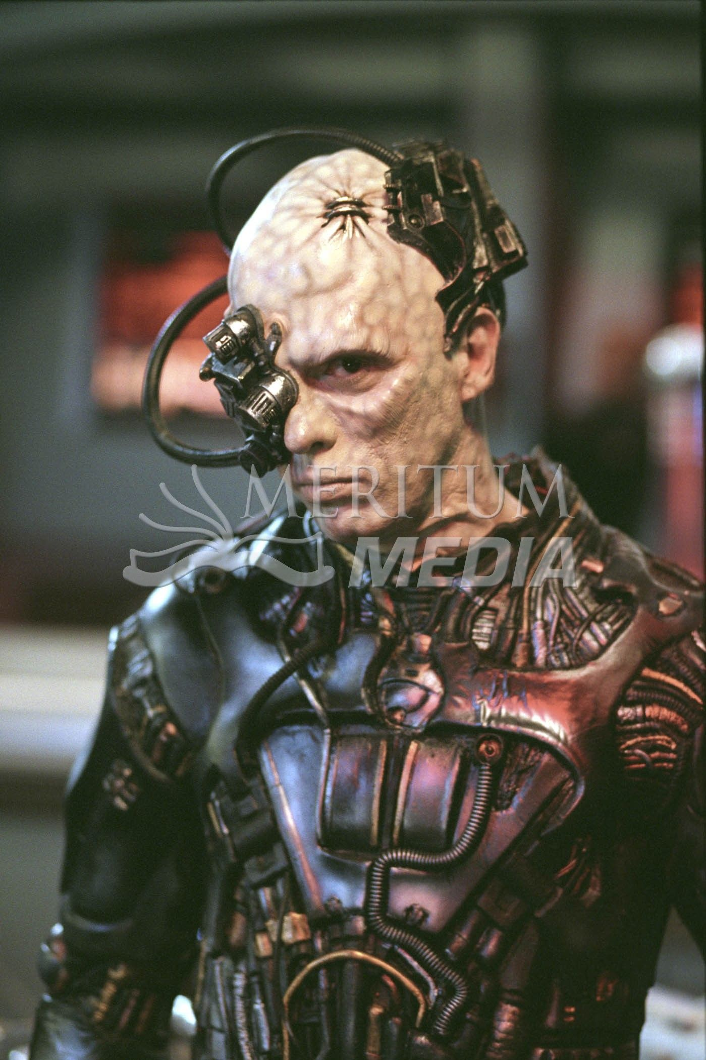 Star Trek awesome Borg cosplay | Cosplay | Pinterest | Star trek ...