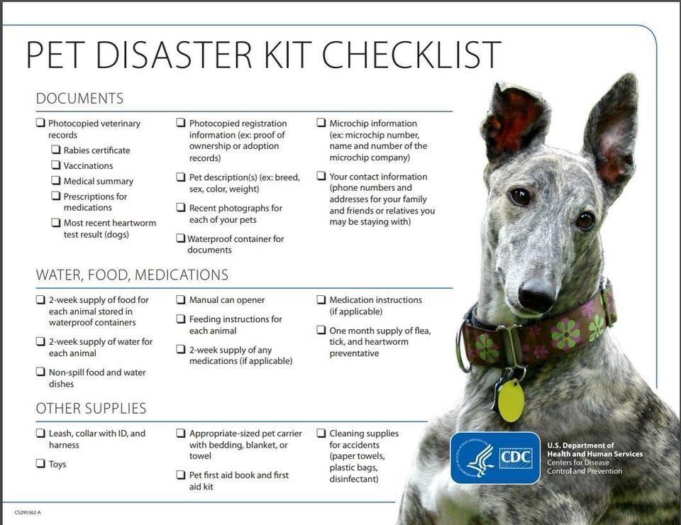 Dog disaster checklist Pet emergency, Disaster