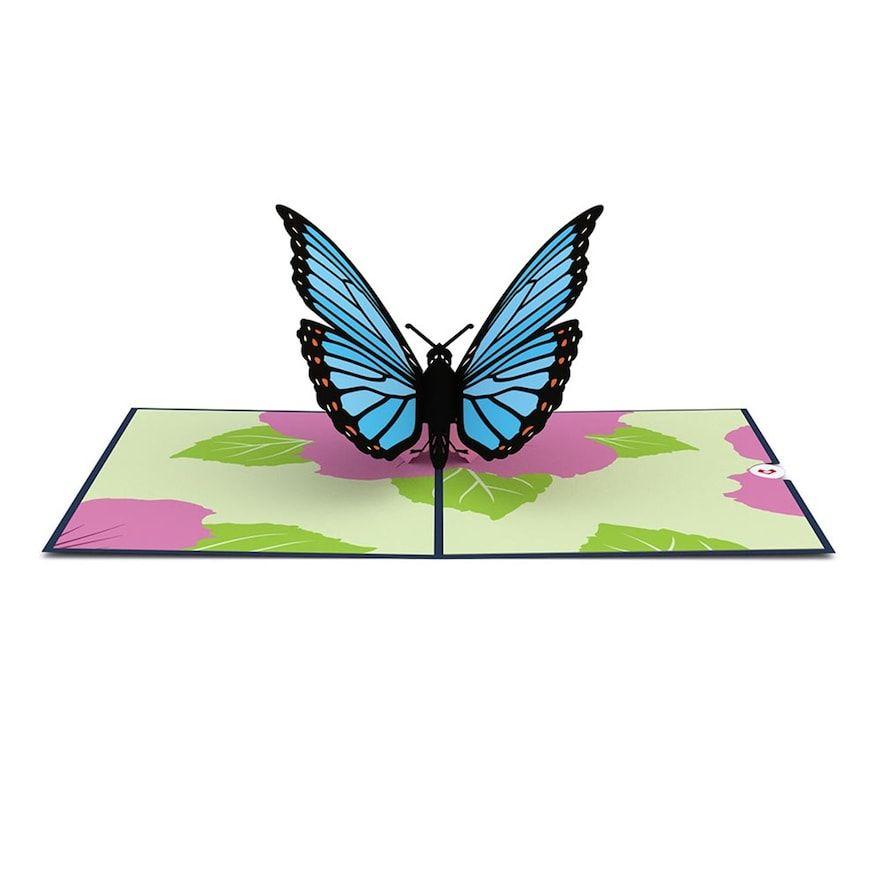 Lovepop Blue Morpho Butterfly Greeting Card Blue Morpho Butterfly Butterfly Cards Lovepop Cards