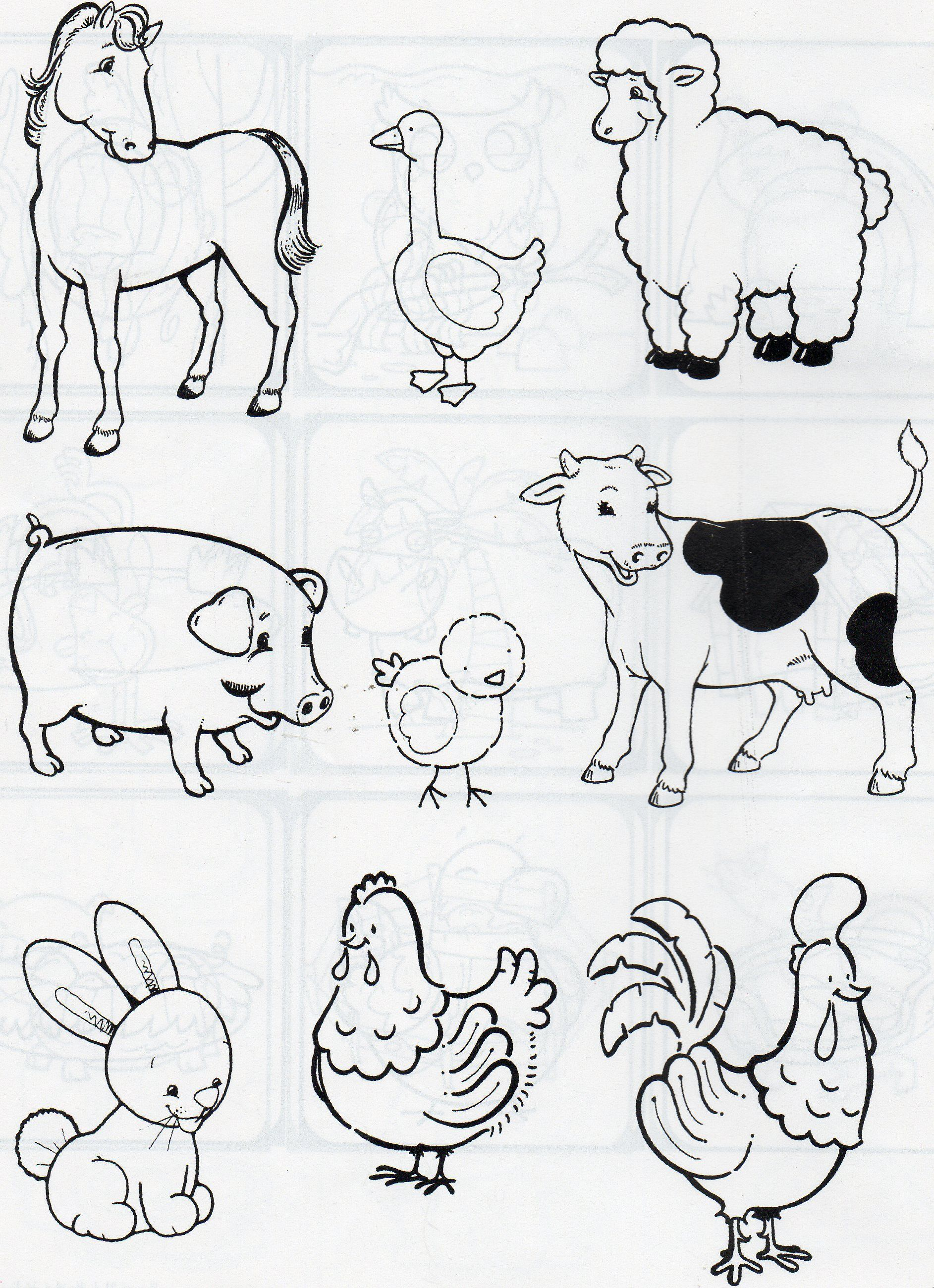 Pin By Christine Heylen On 000 Animal Pictures For Kids Animal Coloring Pages Animal Drawings