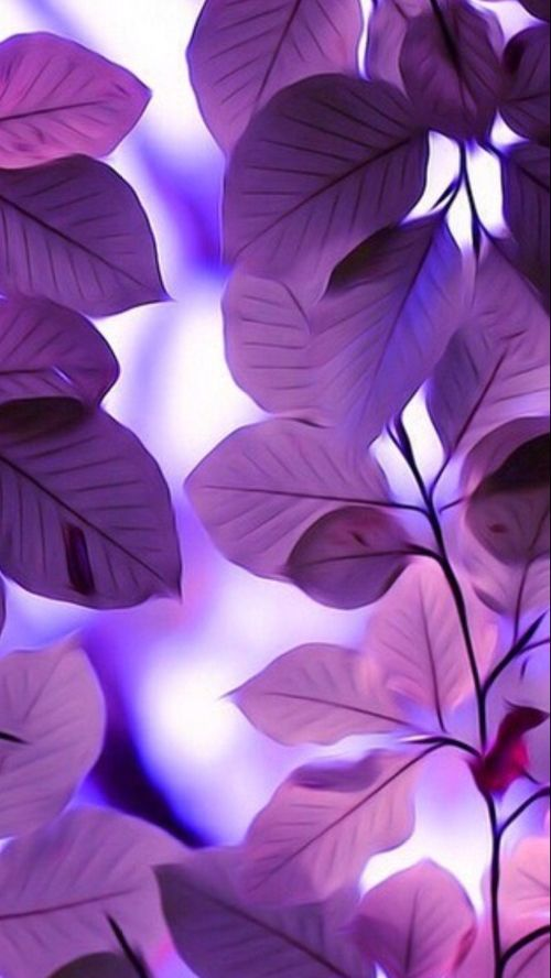 Purple Leaves Phone Wallpaper
