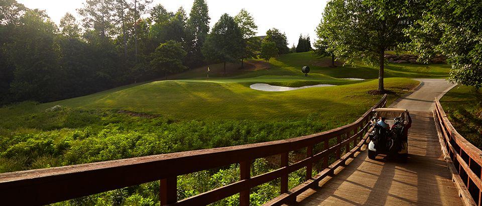 35++ Bears best golf course suwanee ga information