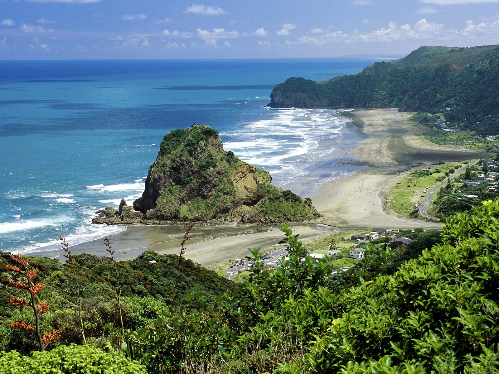Penembakan New Zealand Pinterest: Piha Beach - Auckland, New Zealand