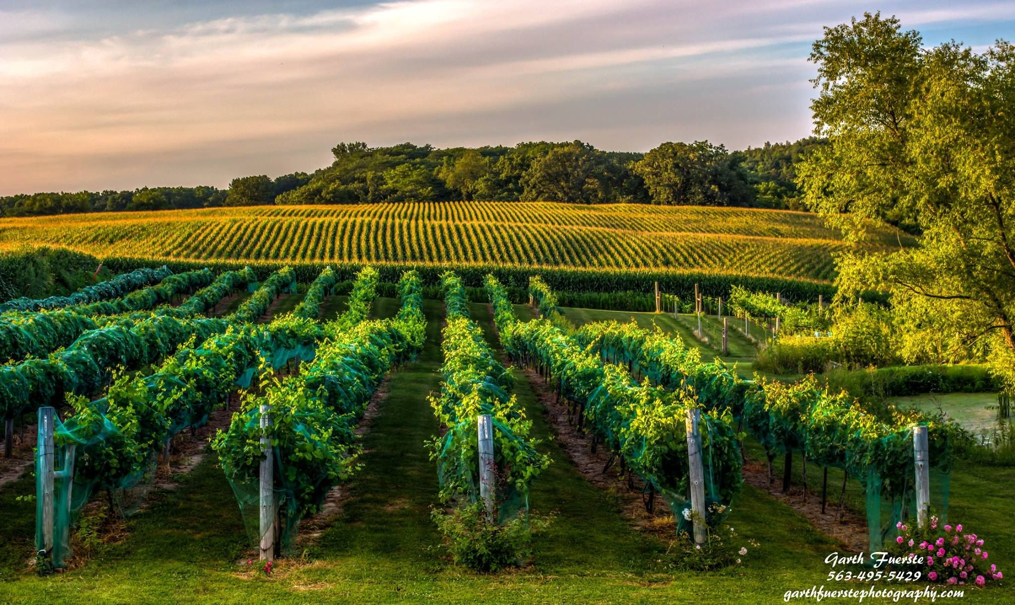 Barrel head winery dubuque ia hdr photography by garth