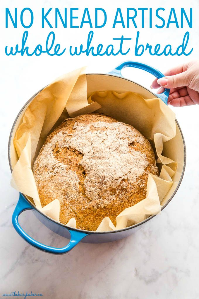 This No Knead Whole Wheat Artisan Bread is the perfect easy whole wheat bread recipe! No overnight rising, no kneading - it's the perfect hearty, crusty loaf! Recipe from thebusybaker.ca! #wholewheat #bread #homemade #homemadebread #wholegrain #dutchoven #howtomakebread #howtomakehomemadebread #healthybread #health