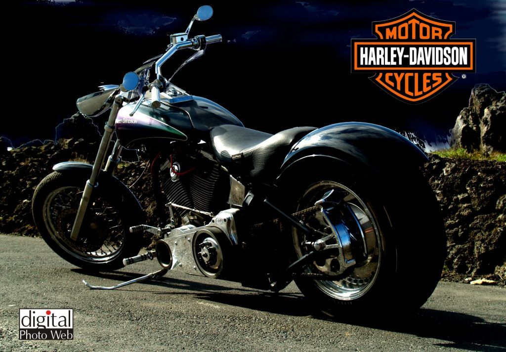 Harly David Son | harley davidson, harley davidson boots