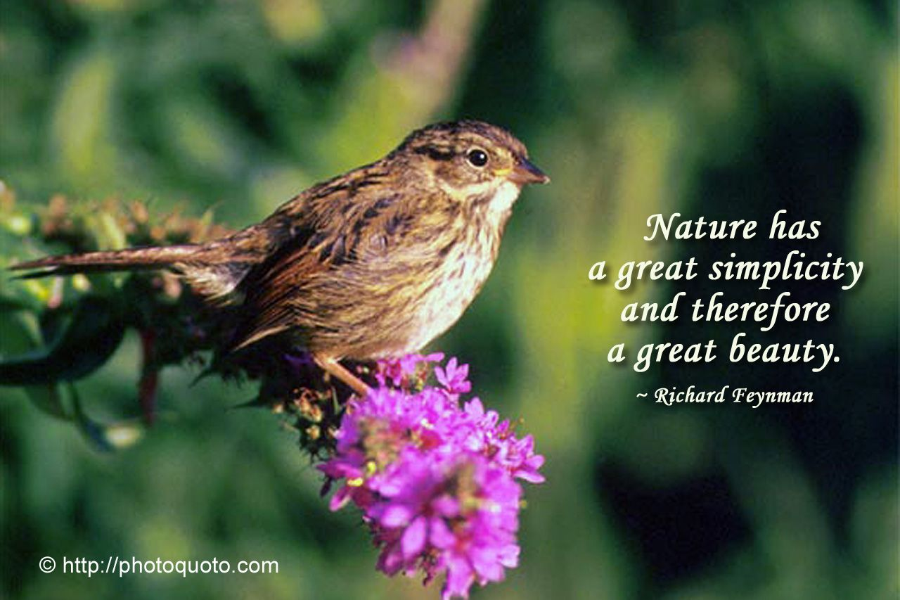 SPLENDID ! | Short nature quotes, Nature quotes, Mother ...