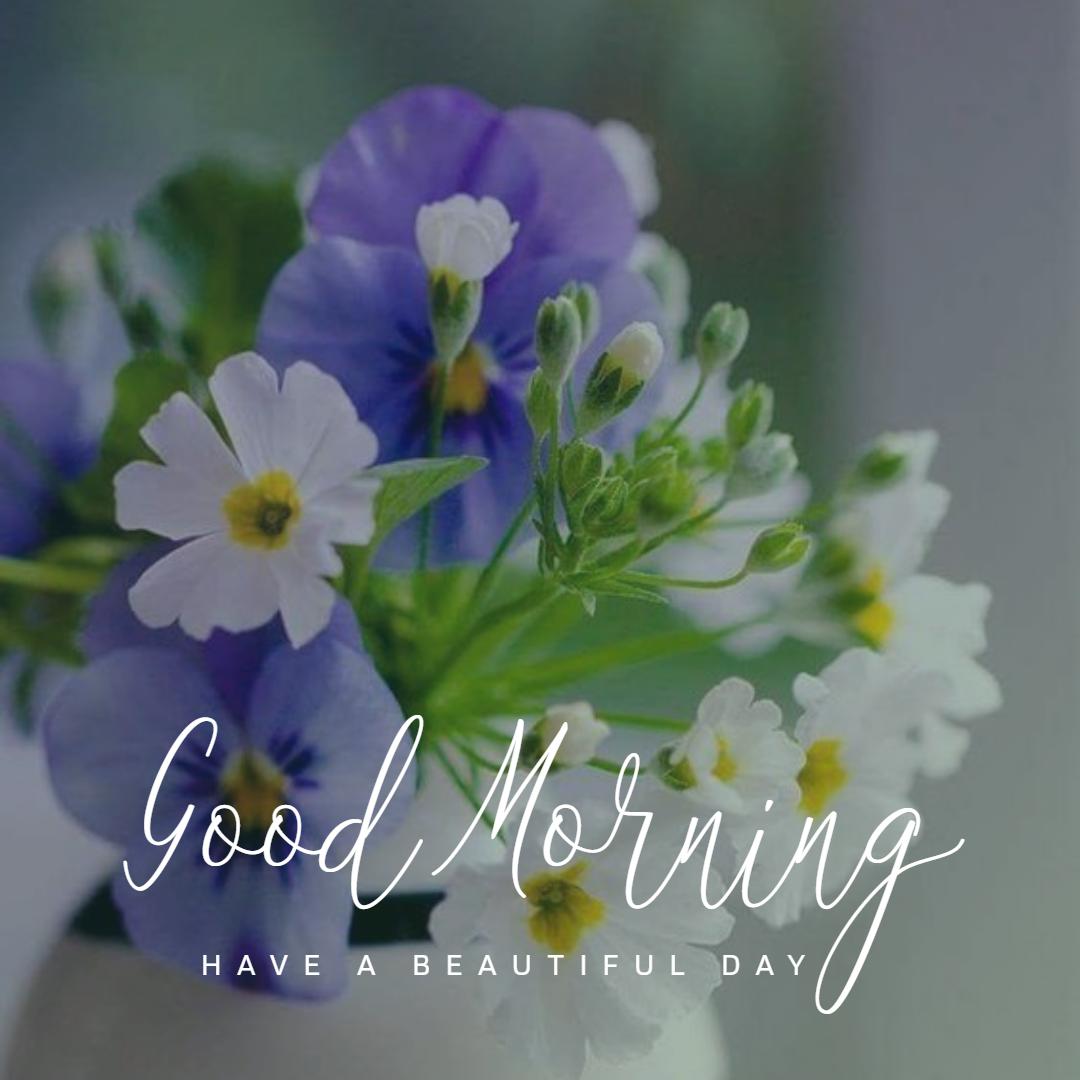 Goodmorning Morning Good Morning Flowers Good Morning Images Good Morning Greetings