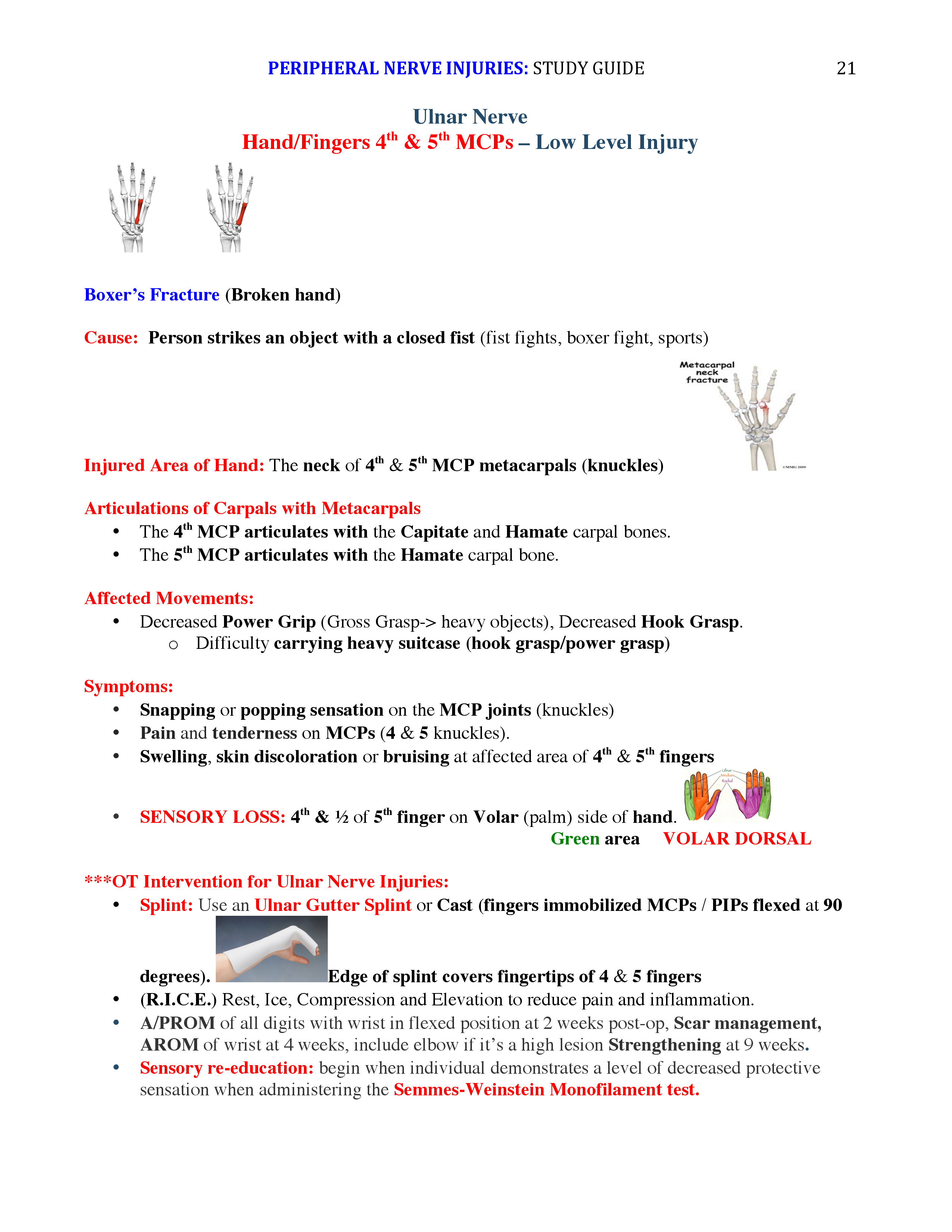 Peripheral Nerve Injuries Study Guide page 21