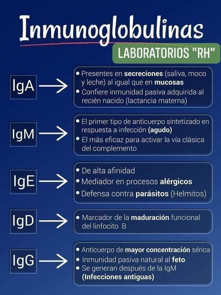 Pin En Bioquímica Y Bases Biológicas