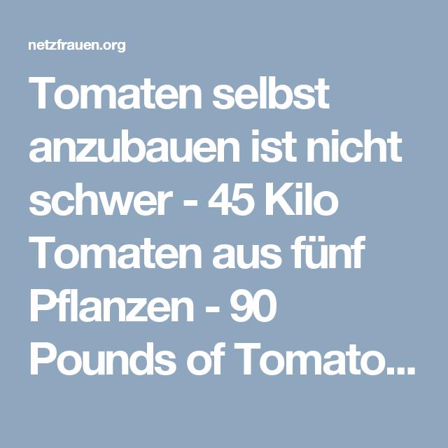 tomaten selbst anzubauen ist nicht schwer 45 kilo tomaten aus f nf pflanzen 90 pounds of. Black Bedroom Furniture Sets. Home Design Ideas
