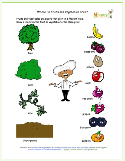 Kids printable learning about how food grows free for Gardening tools preschool