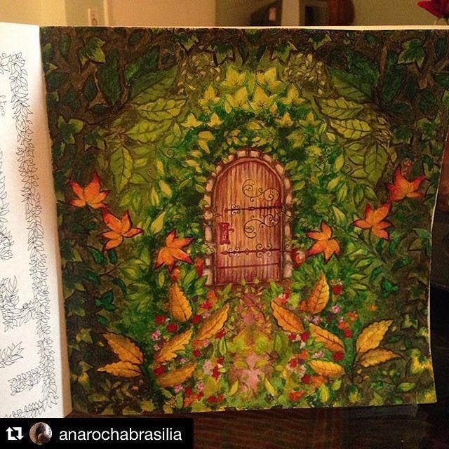 Enchanted Garden Johanna Basford Adult Coloring