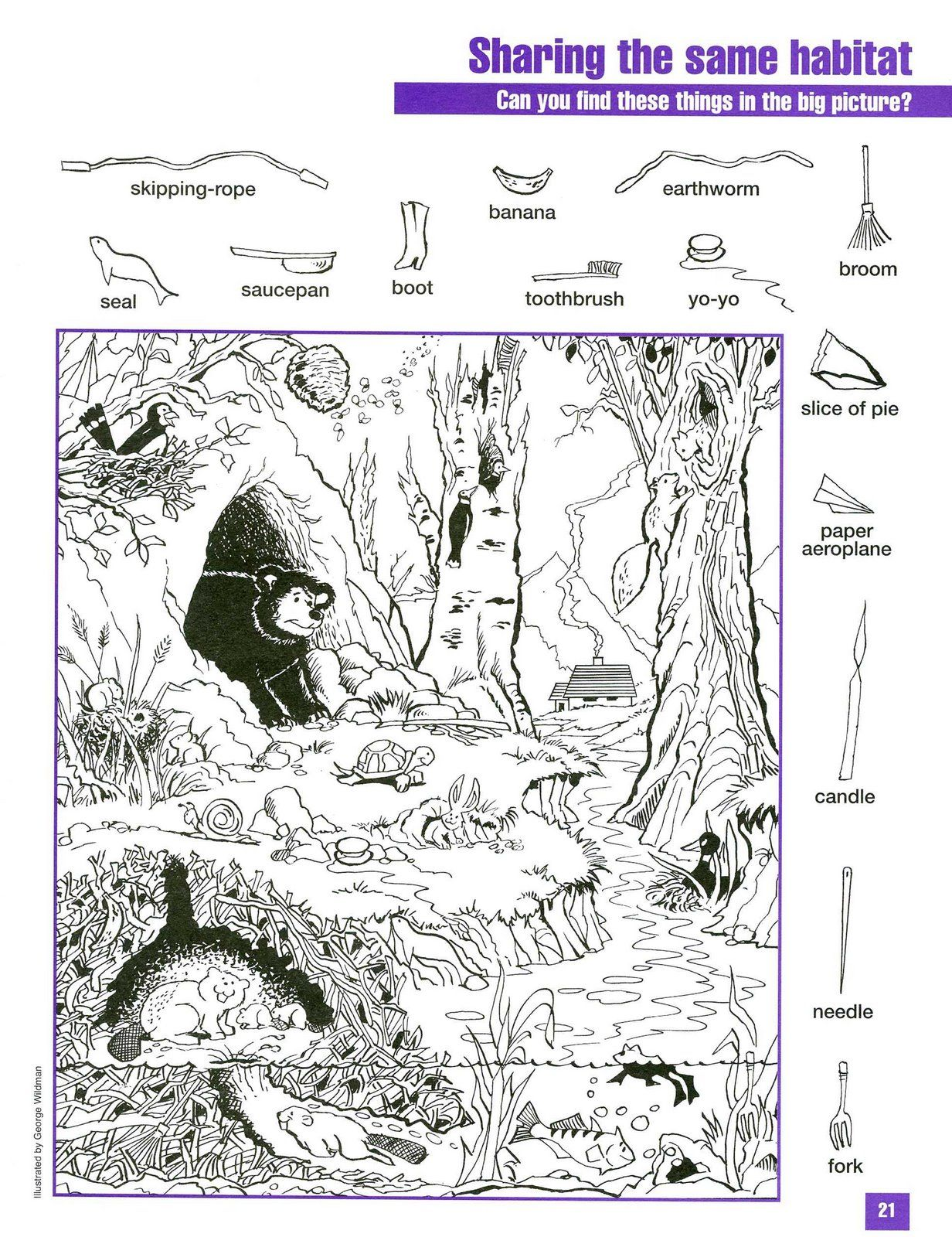Sharing The Same Habitat Hidden Coloring Picture