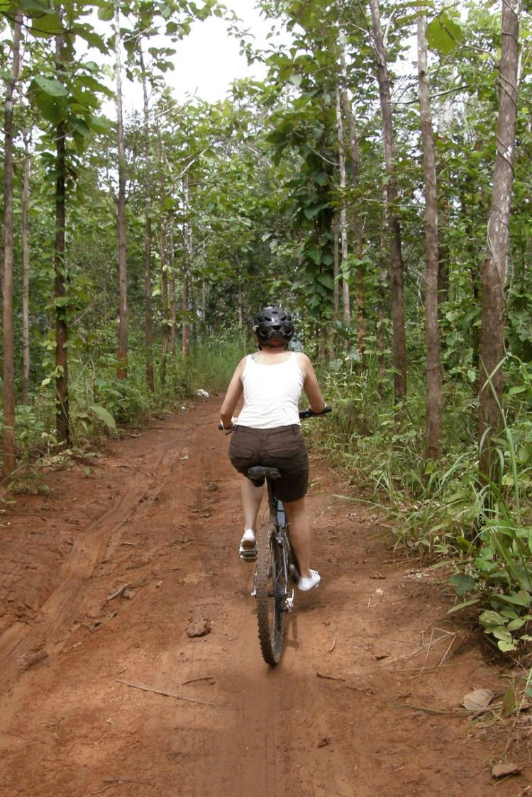 Spend An Exhilarating Day On Dirt Trails Cycling 40 Km