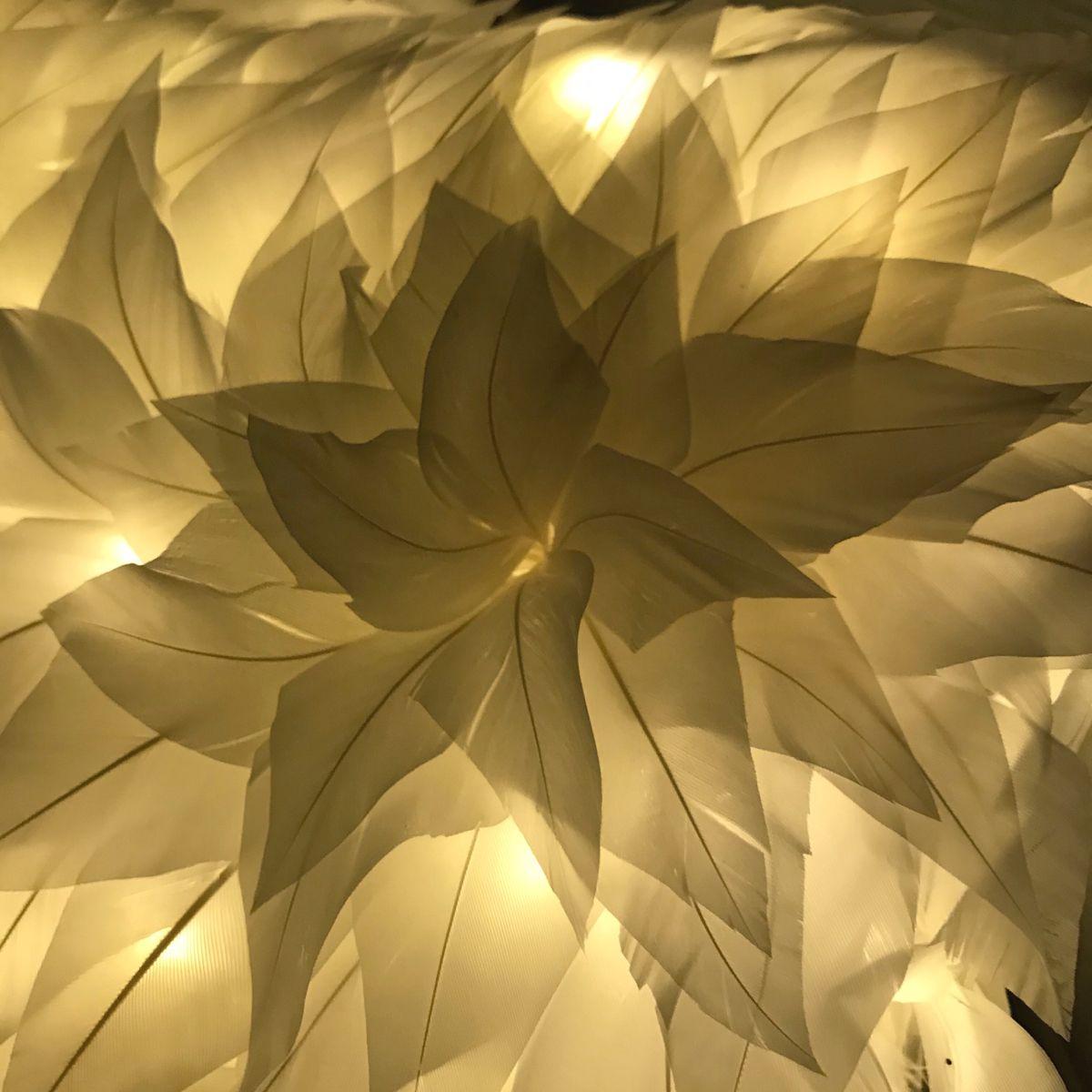 #angel #feather #whitehome. #whiteinterior #scenography #lampshade #appliques #plumasserie #clairdejourpariscreation #whitefeather #instagram #instapic #instaphoto #instahome #instadesign #fabriqueaparis #madeinfrance🇫🇷 #madeineurope #madeinlove #parisjetaime #lavieestbelle