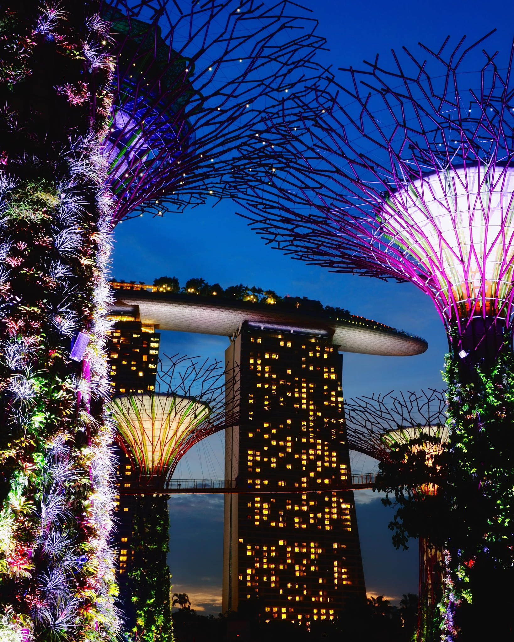 Supertree Grove, Gardens by the Bay, Singapore Gardens