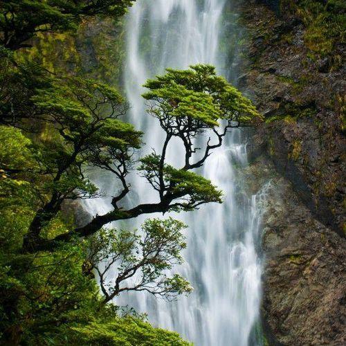 devil's punchbowl falls in arthur's pass national park, new