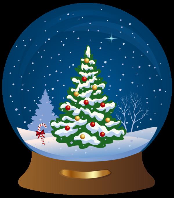 Christmas Snow Globes Christmas Tree Fir Pine Family For Christmas 5395x6141 Christmas Snow Globes Snow Globes Christmas Snow