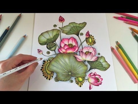 Lotus Blossom Coloring With Colored Pencils Botanical Wonderland Coloring Book Coloring Books Colored Pencil Coloring Book Color Pencil Art