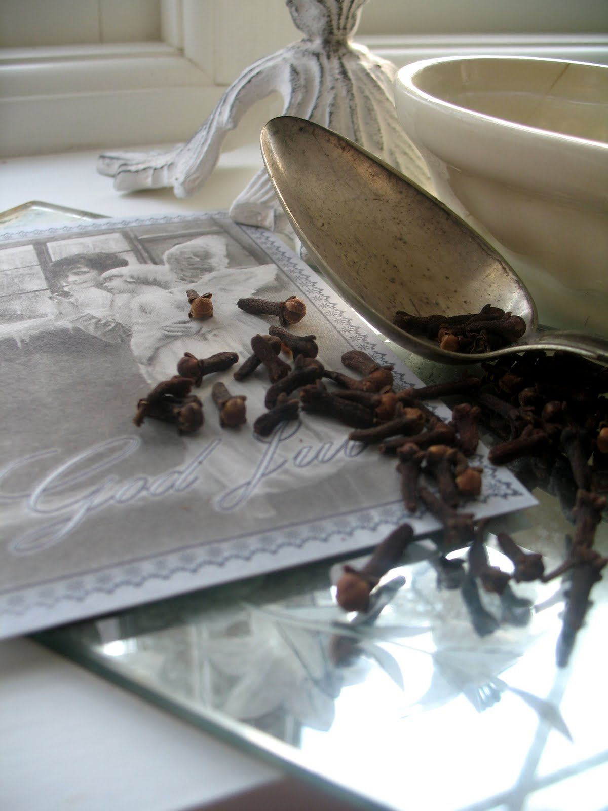 Cloves getting rid of bloating cloves benefits spices