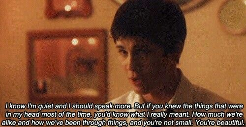 Charlie, The perks of being a wallflower