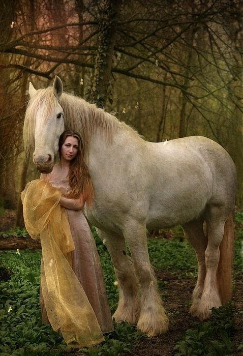 Lady And Horse Google Images Comment Dessiner Les Animaux Cheval Animaux