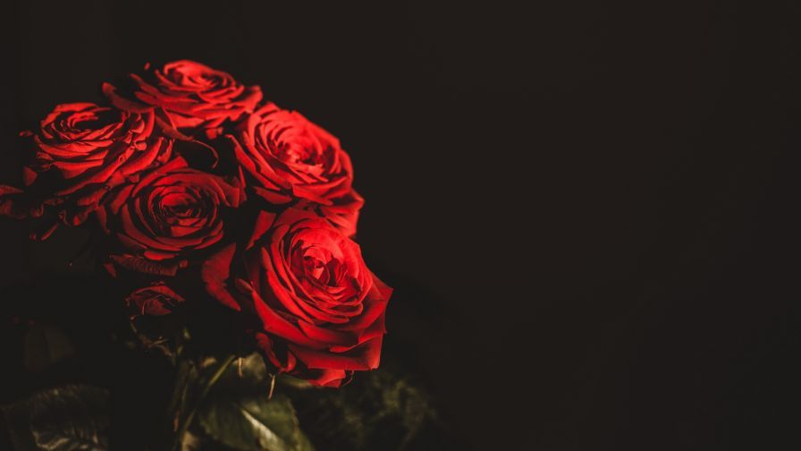 Red Roses Bouquet Hd Wallpaper Red Rose Bouquet Red Roses Rose