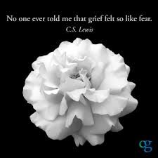 Grief is a natural response to change and loss. It is a process that helps us come to terms with what has been lost.