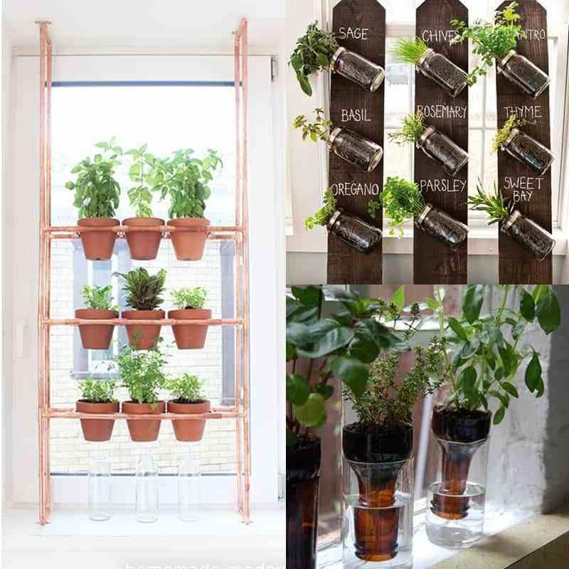 21 diy indoor herbs garden ideas ohoh deco in 2020 on indoor herb garden diy wall mason jars id=58514