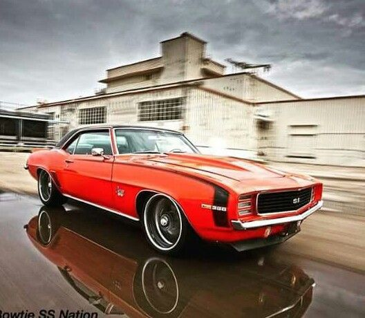 Pin By Von Rose On Pure 100% American Made Muscle