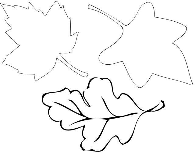 herbstblätter basteln malvorlagen  blattschablone