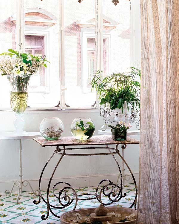 Decorando con plantas y flores