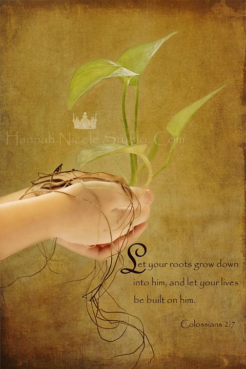 The Roots that Bind-Bible Verse Conceptual Christian Wall Art ...