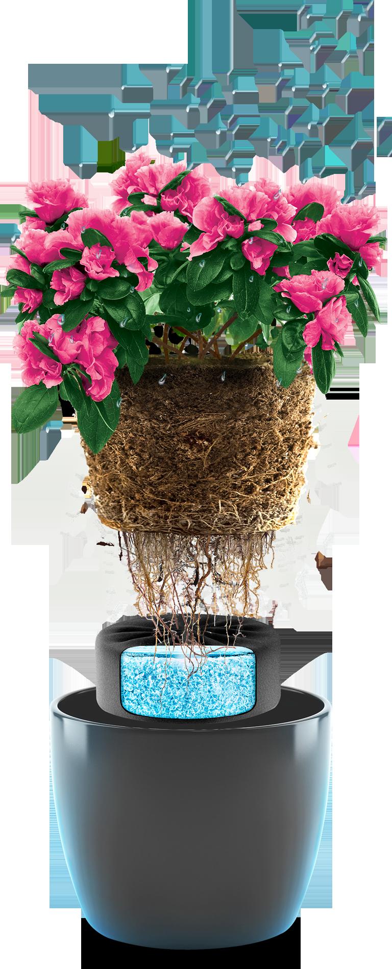 Hydrobox Rewolucja W Nawadnianiu Roslin W Domu I Ogrodzie Decor Home Decor