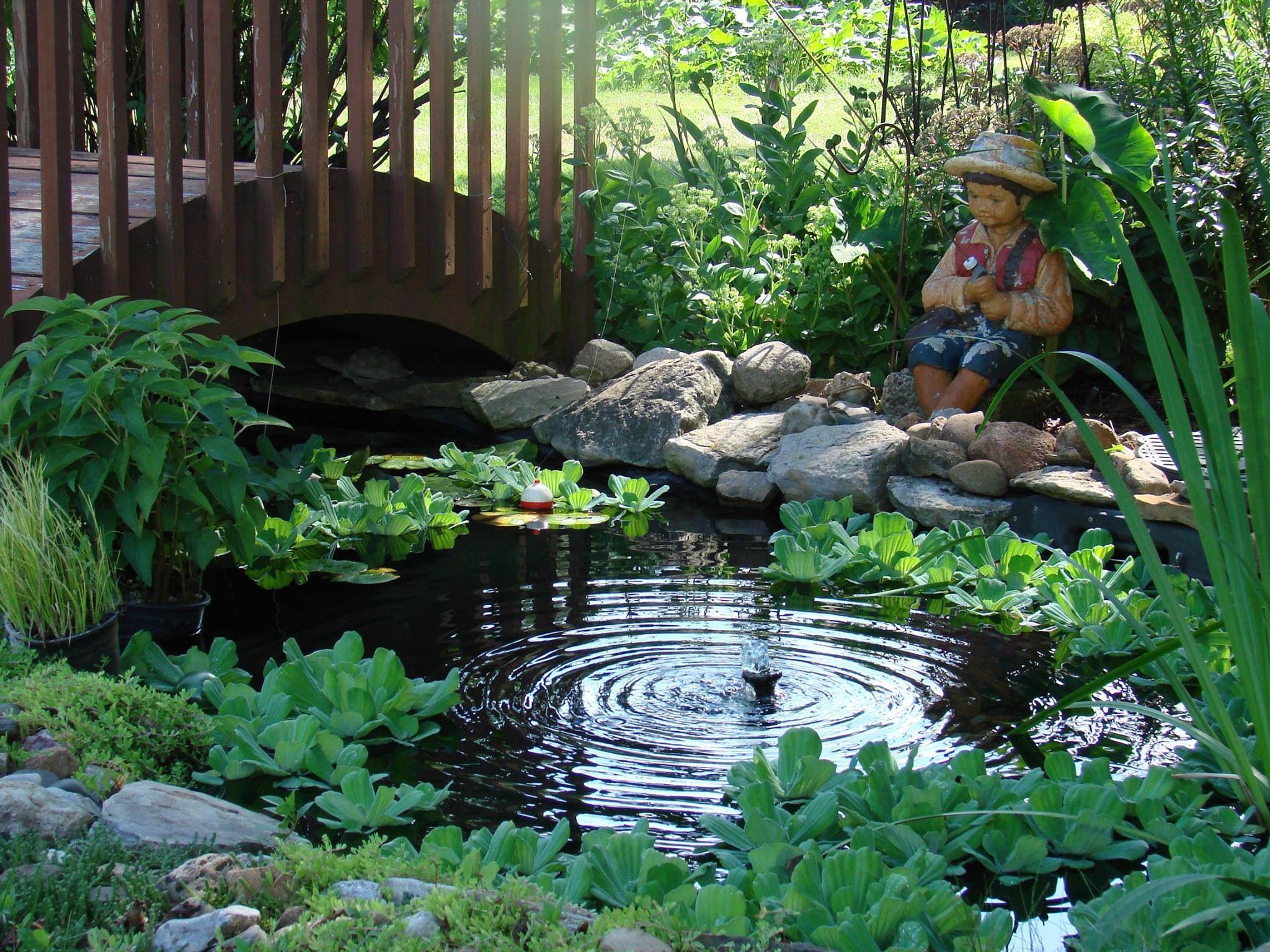 Bassin Préformé Hors Sol 42 best backyard ponds images in 2020 | ponds backyard