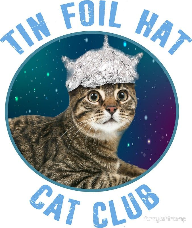 'Tin Foil Hat Cat Club Conspiracy Theory Kitty Space Funny ...