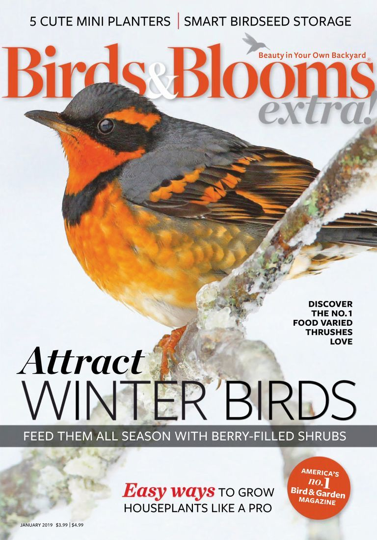 Birds And Blooms Extra January 01 2019