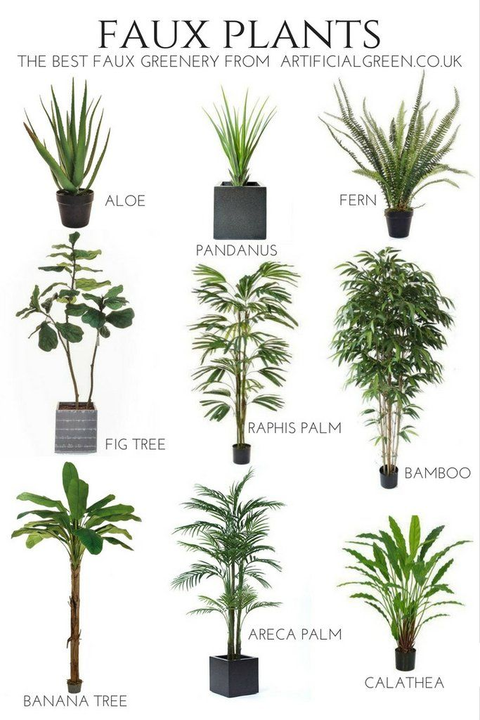 Some Of The Best Faux Plants 2017. Gorgeous faux greenery for ...