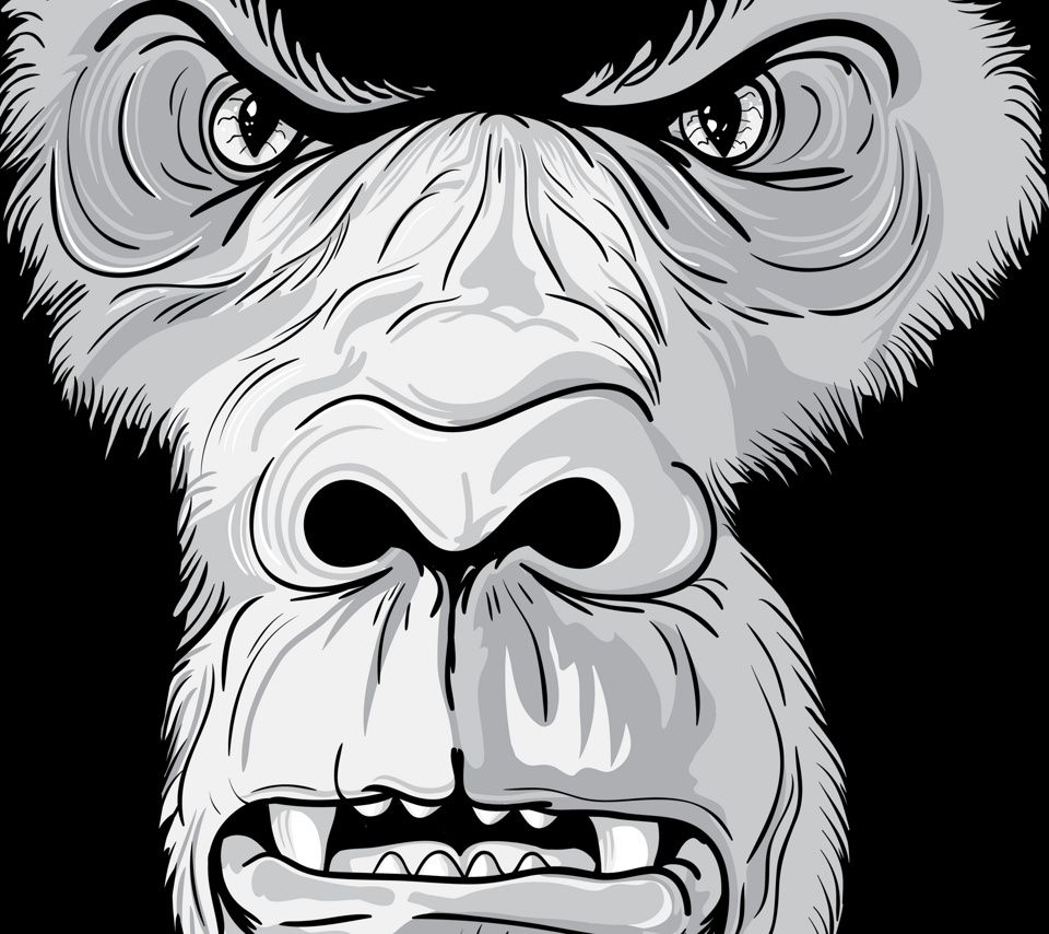 Silverback Ape Cartoon Photos Angry Gorilla Wallpaper Con