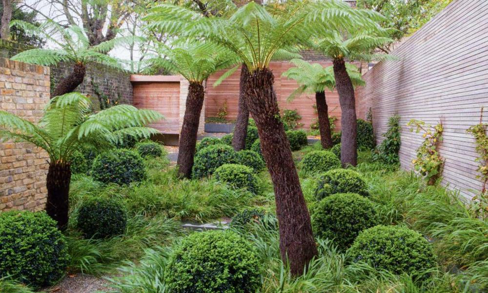 outdoor spaces no grass garden design