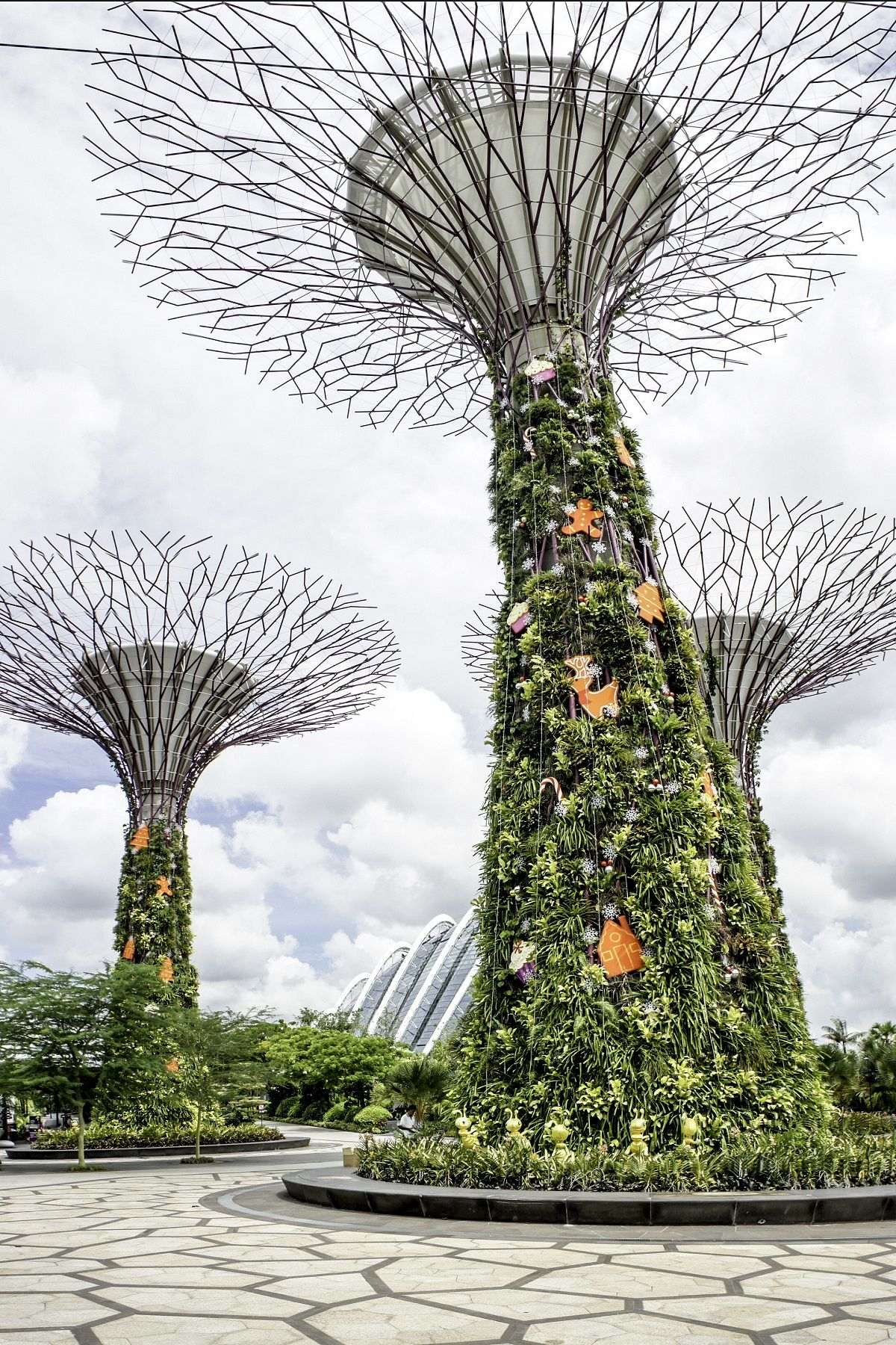 Visit Gardens by the Bay in Singapore with this admission