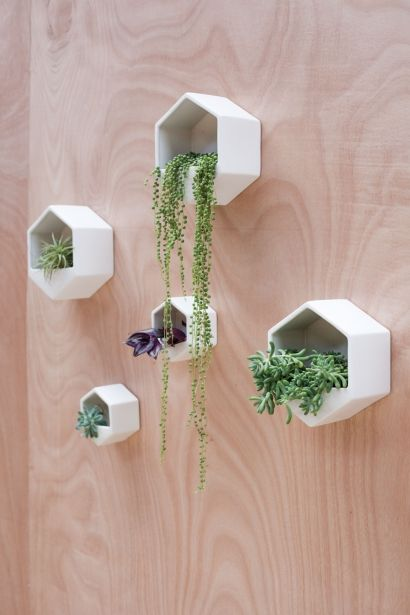 Hexagon Wall Planter Black Wall Mounted Planters