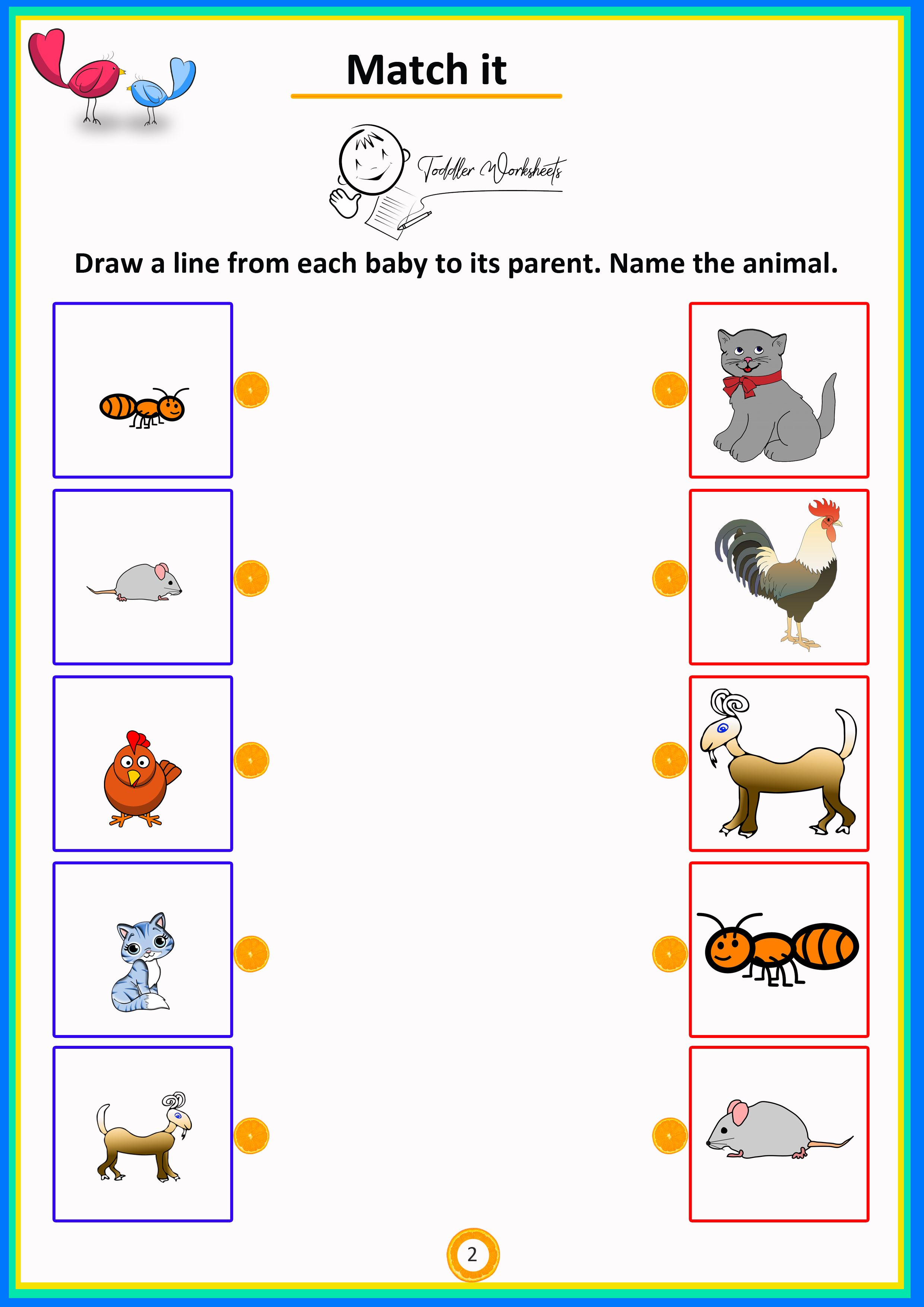 match the animals from their mother to baby simle math worksheets preschool math worksheets. Black Bedroom Furniture Sets. Home Design Ideas