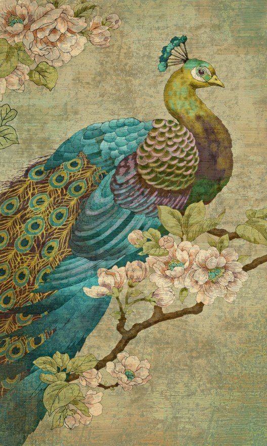 Vintage Peacock Fabric