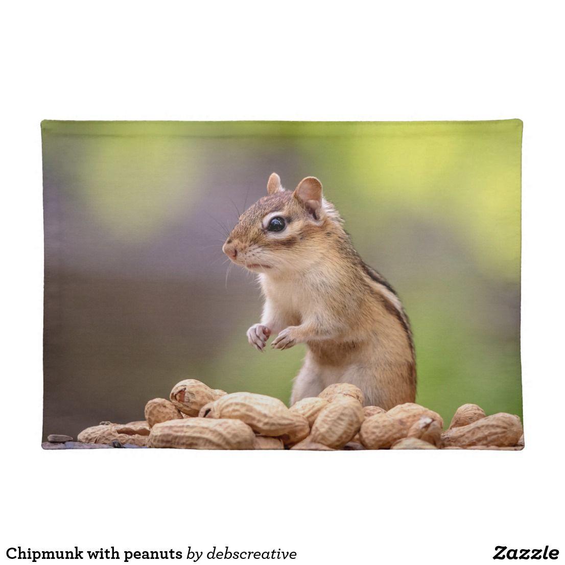 Chipmunk with peanuts placemat chipmunks